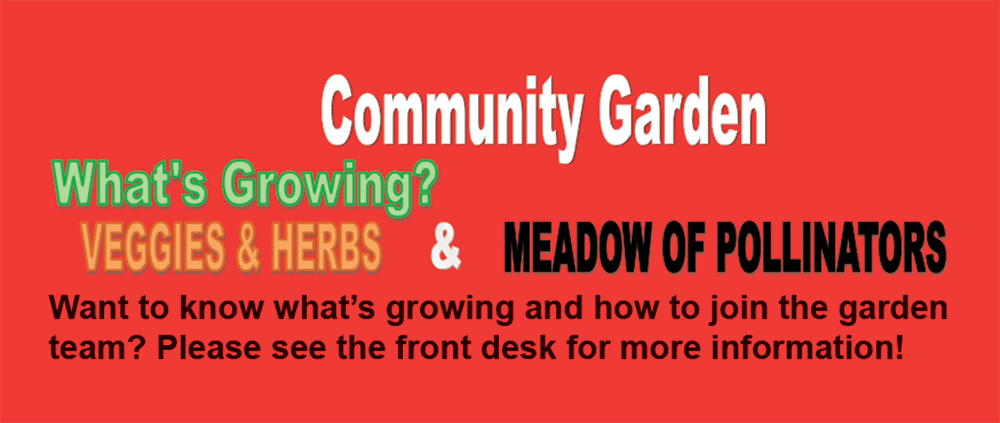 Community Garden What's Growing? Veggies & Herbs & Meadow of Pollinators Want to know what's growing and how to join the garden team? Contact the front desk for more information.