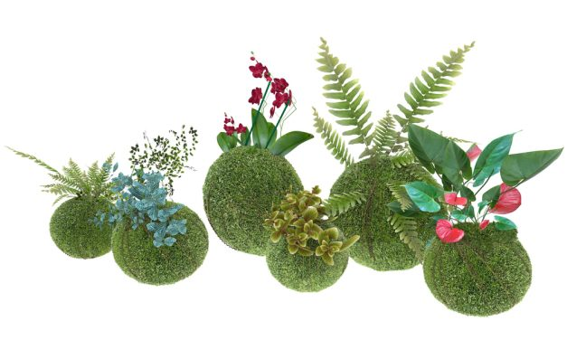 Kokedama Workshop-Dec 6